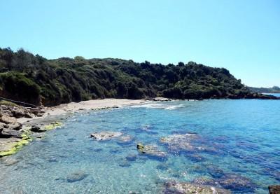 Παραλία Σκαφιδιάς